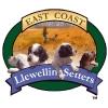 East Coast Llewellin Setters logo
