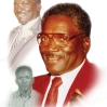 Uncle James Brown Memorial Portrait